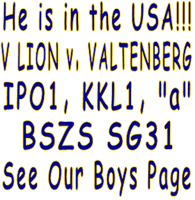 "He is in the USA!!! V LION v. VALTENBERG IPO1, KKL1, ""a"" BSZS SG31 See Our Boys Page"